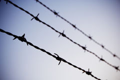 Barb wire. Against blue sky royalty free stock photos