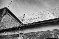 Barb Wire fotos de stock royalty free