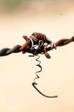 Barb Wire Royalty-vrije Stock Afbeeldingen