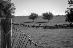 Barb Wire Imagenes de archivo