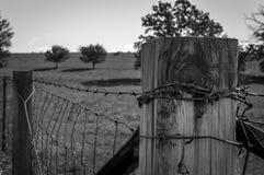 Barb Wire Imagen de archivo