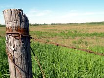 Barb Wire. Farming fence post Stock Photos