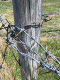 Barb wire. Fence pole with barb wire Royalty Free Stock Photos