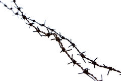 Barb Wire. Isolated on white Royalty Free Stock Image