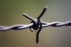 Barb Wire Immagine Stock