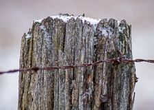 Barb Wire Attached To Fence-Post royalty-vrije stock afbeelding
