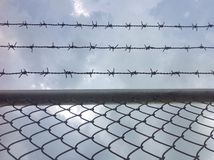 Barb wire and blue sky Stock Image
