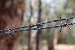Barb Wire Close Up Stock Photography