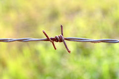 Barb wire. Close up of a rusty old barb wire Royalty Free Stock Photo
