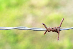 Barb wire. Close up of a rusty old barb wire Stock Image