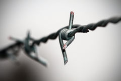 Barb wire closeup. Closeup shot of barb wire looking beautiful Stock Photography