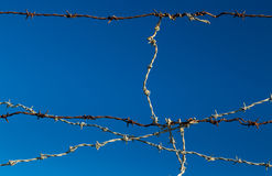 Barb Wire Connection Stock Photography