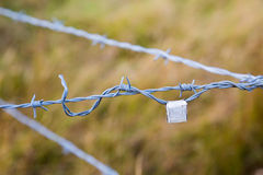 Barb Wire Country Fence Royalty Free Stock Images