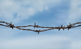 Barb wire detail closeup Stock Image