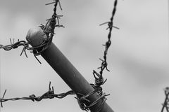 Barb wire at detention center Royalty Free Stock Photography