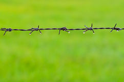 Barb wire with dew Royalty Free Stock Photos