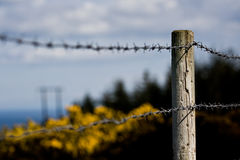 Barb Wire Fence Stock Photos