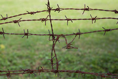Barb wire fence. And grass background Stock Photo