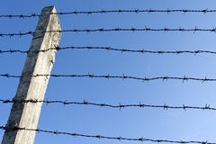 Barb wire fence Stock Photography