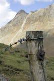 Barb Wire Fence royalty-vrije stock afbeeldingen