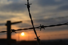 Barb-wire fence Stock Photos