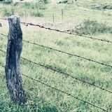 Barb wire fence in Kula on Maui. A barbed wire fence on a field in Kula, Maui, Hawaii Royalty Free Stock Photos