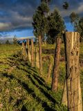 Barb wire fence panorama royalty free stock images