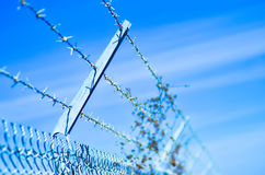 Barb wire fence Stock Images