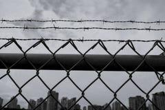 Barb Wire Fence in Stad in Humeurig Schot Stock Afbeeldingen