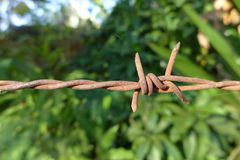 Barb wire. Barb wire, iron wire with barb Royalty Free Stock Image