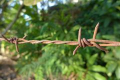 Barb wire. Barb wire, iron wire with barb Royalty Free Stock Images