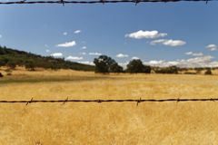 Barb wire meadow. Barb wire around a meadow on the way from San Francisco to Yosemite National Park Royalty Free Stock Photography
