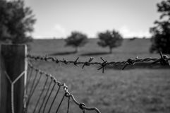 Barb Wire. A perspective bokeh image of a barb wire fence Royalty Free Stock Image