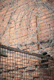 Barb wire Royalty Free Stock Images