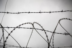 Barb wire. Shoot against a gray sad sky Royalty Free Stock Photos