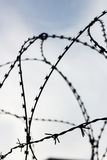 Barb wire on sky background. Barb wire in jail. Captivity and freedom concept. Background Stock Images
