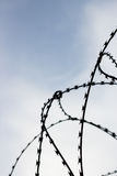 Barb wire on sky background. Barb wire in jail. Captivity and freedom concept. Background Royalty Free Stock Image
