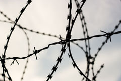 Barb wire on sky background. Barb wire in jail. Captivity and freedom concept. Background Royalty Free Stock Images