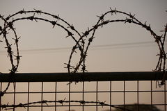 Barb wire Stock Photography