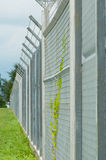 Barb Wired Fence Stock Photography