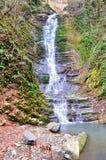Barba Berendey della cascata nel parco nazionale di Soci Sochi, Russia Immagini Stock Libere da Diritti