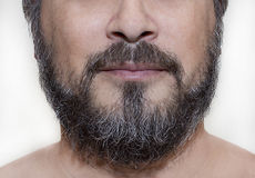 Barba de la sal y de la pimienta Imágenes de archivo libres de regalías