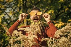 Barba della spighetta al barbiere ed al parrucchiere fotografia stock libera da diritti