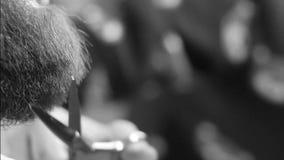 A barba do corte e da preparação do close up velho-denominou a metragem filme