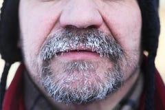 Barba e baffi grigi congelati Fotografia Stock Libera da Diritti