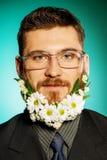 Barba grande Fotografia de Stock