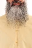 Barba longa, cabelo facial Imagens de Stock Royalty Free