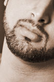 Barba masculina bem-constituído fotografia de stock