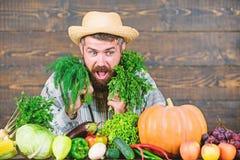 Barba sana enorme granjero maduro barbudo Festival de la cosecha cocinero del hombre con la cosecha rica del oto?o Comida org?nic fotos de archivo
