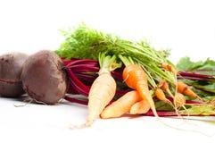 Barbabietola e carota Immagine Stock Libera da Diritti